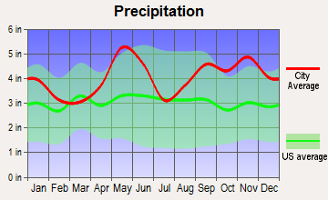 The Woodlands, Texas average precipitation