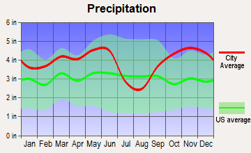 Warren City, Texas average precipitation
