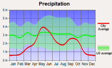 Wellington, Texas average precipitation