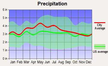 Blacksburg, Virginia average precipitation