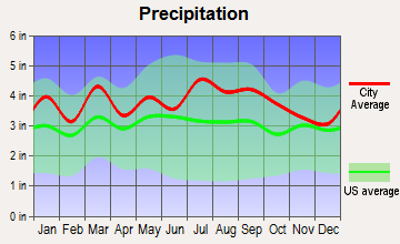 Brodnax, Virginia average precipitation
