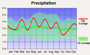 Cedar Bluff, Virginia average precipitation