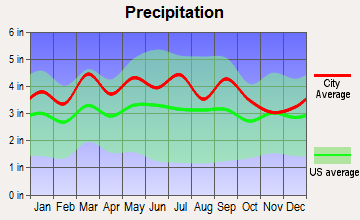 Chatmoss, Virginia average precipitation