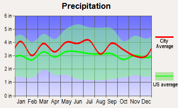 Clarksville, Virginia average precipitation