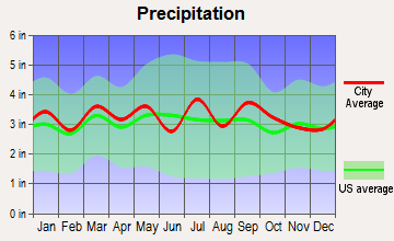 Drakes Branch, Virginia average precipitation