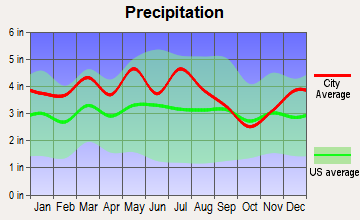 Emory-Meadow View, Virginia average precipitation