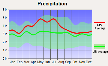 Grundy, Virginia average precipitation