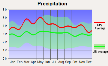 Independence, Virginia average precipitation