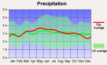 Radford, Virginia average precipitation