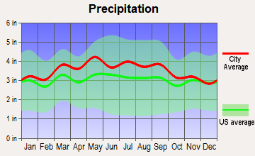Roanoke, Virginia average precipitation