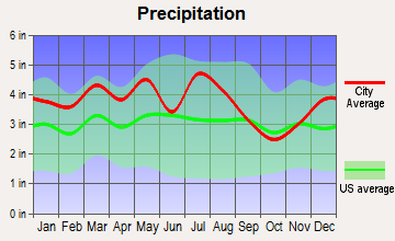Saltville, Virginia average precipitation