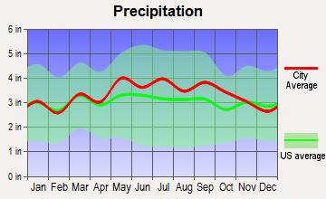 Stuarts Draft, Virginia average precipitation