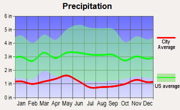 Clarkston, Washington average precipitation