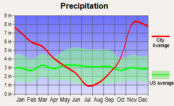 Dollar Corner, Washington average precipitation