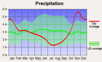 Bow, Washington average precipitation