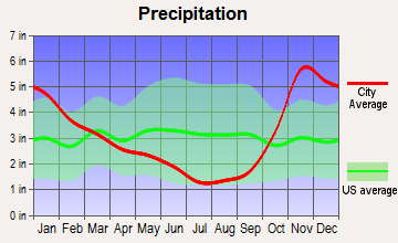 Point Roberts, Washington average precipitation