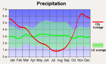 Parkland, Washington average precipitation