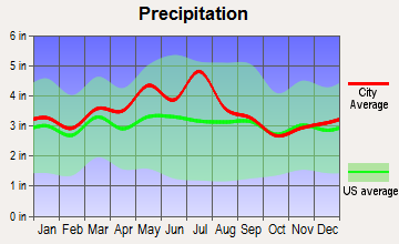 Piney View, West Virginia average precipitation