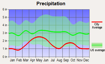 Dayton, Wyoming average precipitation
