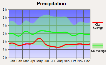 Auburn, Wyoming average precipitation