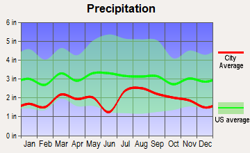 Telluride, Colorado average precipitation
