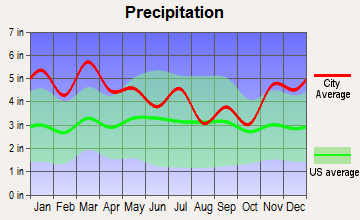 Mountain Brook, Alabama average precipitation