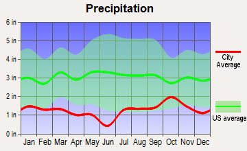 Dove Creek, Colorado average precipitation