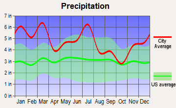 New Brockton, Alabama average precipitation