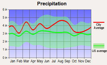 Dover Base Housing, Delaware average precipitation