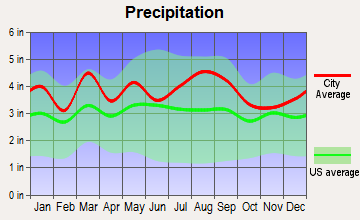 Bowers, Delaware average precipitation