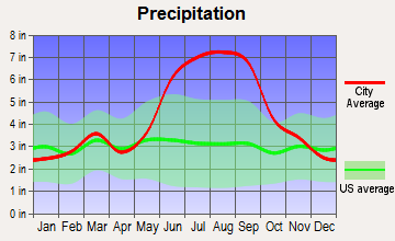 Mims, Florida average precipitation