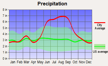 Oak Hill, Florida average precipitation