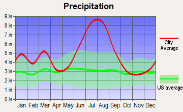 Perry, Florida average precipitation