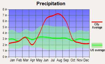 Poinciana, Florida average precipitation