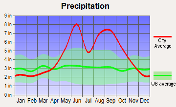 Surfside, Florida average precipitation