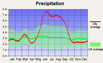 Tildenville, Florida average precipitation