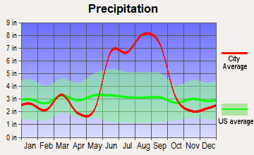 Venice, Florida average precipitation