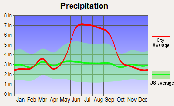 Wedgefield, Florida average precipitation