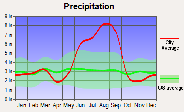 West and East Lealman, Florida average precipitation