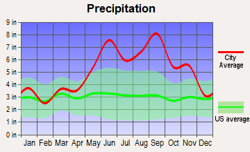 Westgate-Belvedere Homes, Florida average precipitation