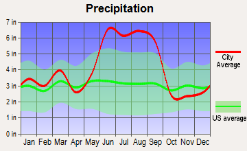 Wildwood, Florida average precipitation