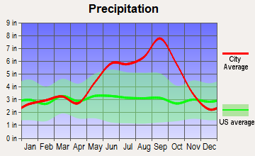 Fort Pierce North, Florida average precipitation