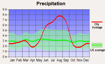 Greater Carrollwood, Florida average precipitation