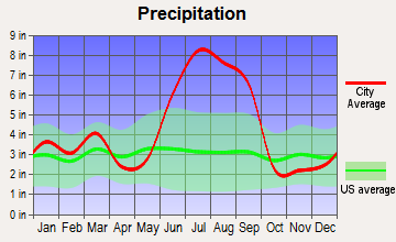Hernando Beach, Florida average precipitation