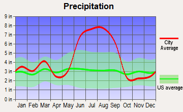 Homosassa, Florida average precipitation