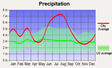 Dowling Park, Florida average precipitation