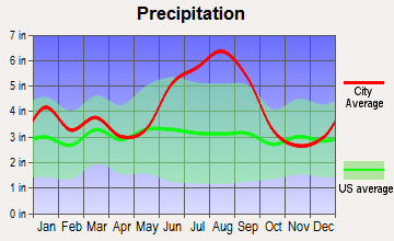 Riceboro, Georgia average precipitation