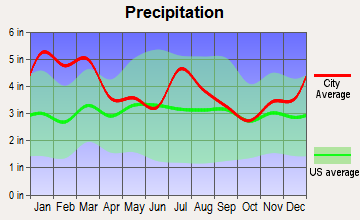 Siloam, Georgia average precipitation