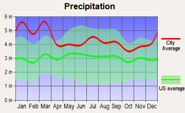 Snellville, Georgia average precipitation