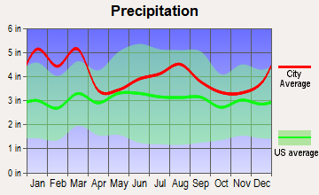 Thomson, Georgia average precipitation